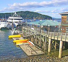 Bar Harbor Cruises by Jack Ryan