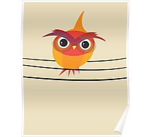 Owl on a Wire Poster