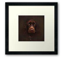 Charlie - the portrait Framed Print