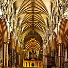 Lincoln Cathedral by Theresa Elvin