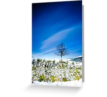 Tree and mossy wall in the snow, Southern Upland Way, Scottish Borders Greeting Card