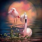 Where The Wild Flamingo Grow by Carol  Cavalaris