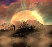 Desert Sunset by CarolM