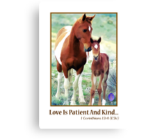 Wild Mare and Foal Canvas Print