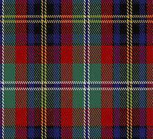 00524 Black Hills Tartan Fabric Print Iphone Case by Detnecs2013