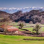 Farmhouse Basque Country by Joshua McDonough