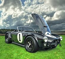 Ford Cobra 1962 CSX 2001 by John E Adams
