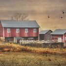 Route 419 Barn by Lori Deiter