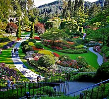 Butchart Gardens by Nancy Richard