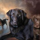 Life Of A Lab by Carol  Cavalaris