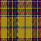 00552 Bracken Tartan Fabric Print Iphone Case by Detnecs2013
