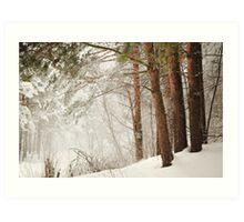 White Silence Art Print