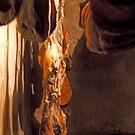 Prosciutto Cellar by phil decocco