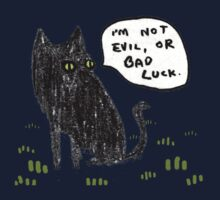 Black Cats Aren't Evil Kids Clothes