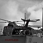 HMS Dauntless Lynx by Andrew Pounder