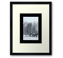 Tree Withstanding A Snowstorm - Middle Island, New York Framed Print