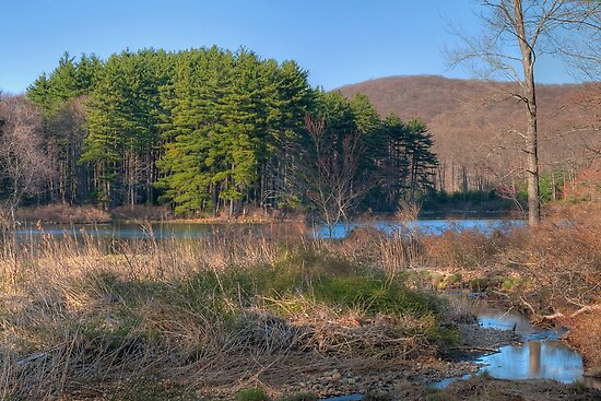 Lake Nawahunta In March by JHRphotoART