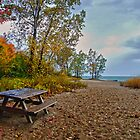 Fall Beach by Heather  Andrews Kosinski