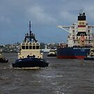 NEWCASTLE TUGS by Phil Woodman