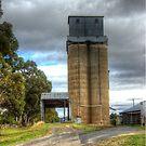 Old Grain Mill Boorowa  NSW  Australia  by Kym Bradley