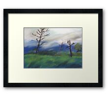 Aftermath of Yasi ,2011 Tully 2012  Framed Print