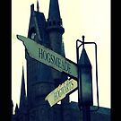 Harry Potter: Hogwarts/Hogsmeade - Iphone Case  by sullat04