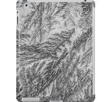 Frost 2 B&W iPad Case/Skin