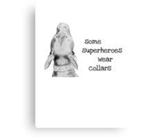 All Dogs Are Superheroes Canvas Print