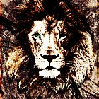 Lion test by adventgfx