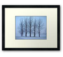 Winter Trees II Framed Print
