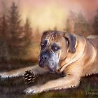Gentle Ben - Mastiff by Carol  Cavalaris