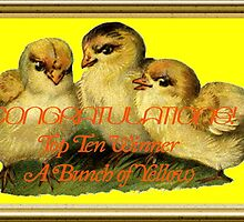 Banner - ABOY - Top Ten Winner by aprilann