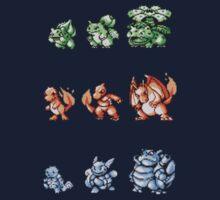 Starter Pokemon evolutions Kids Clothes