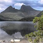 Cradle Mountain (2) by Larry Davis