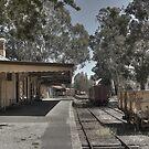 Healsville Railway Station by Colin  Ewington