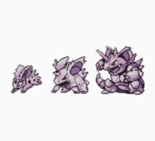Nidoran evolution  by kyokenbyo