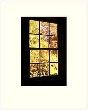 A Window View by Terri~Lynn Bealle