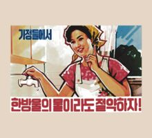 North Korean Propaganda - Plumbing by Tim Topping