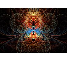 Fractal - Insect - Black Widow Photographic Print