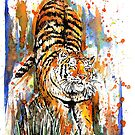 Tiger Stretch by Calum Margetts Illustration