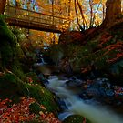Autumn bridge by Beverly Cash