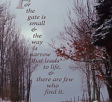 For the gate is narrow-Matthew 7:14 by vigor