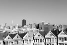 Painted Ladies by Fern Blacker
