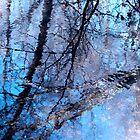 Liquid Sky by rcrosss17