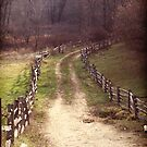 Sturbridge Path by Balletvamp