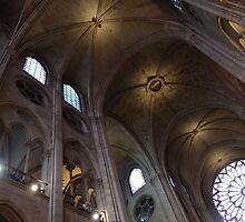 Notre Dame de Paris by Wayne Gerard Trotman
