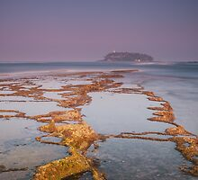 Korralovy reef by naumenko