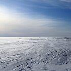 icy wind by mrivserg