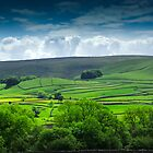 Beautiful Nidderdale by James Elkington