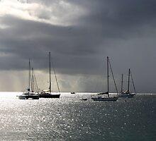 Boats at Store Bay, Tobago by Wayne Gerard Trotman